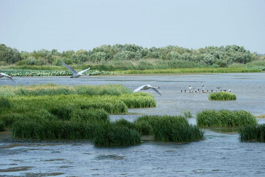 Astrakhansky Nature Preserve
