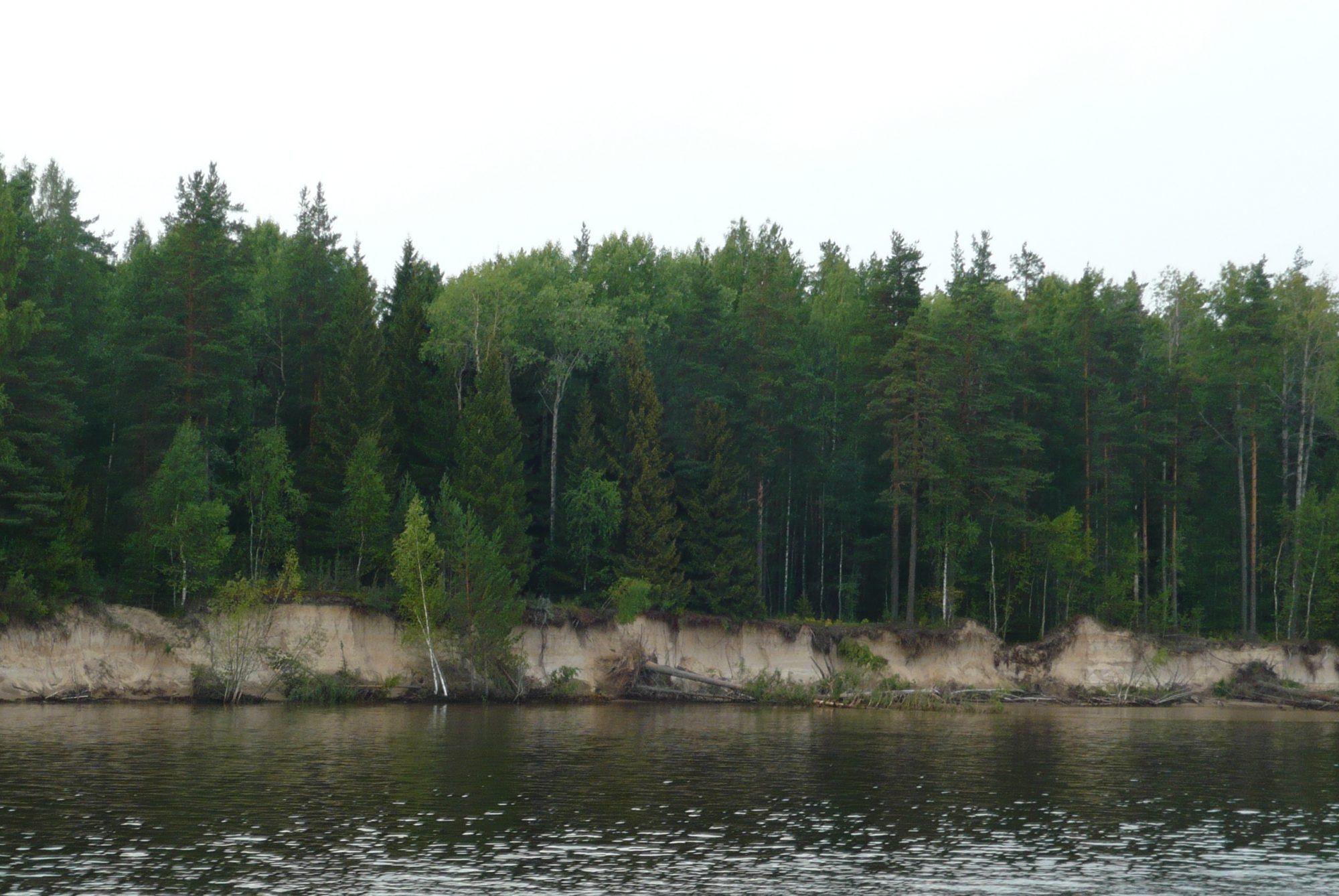 Nizhnesvirsky Nature Preserves